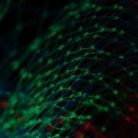 Le big data : comment transformer la promesse en une réalité tangible ?